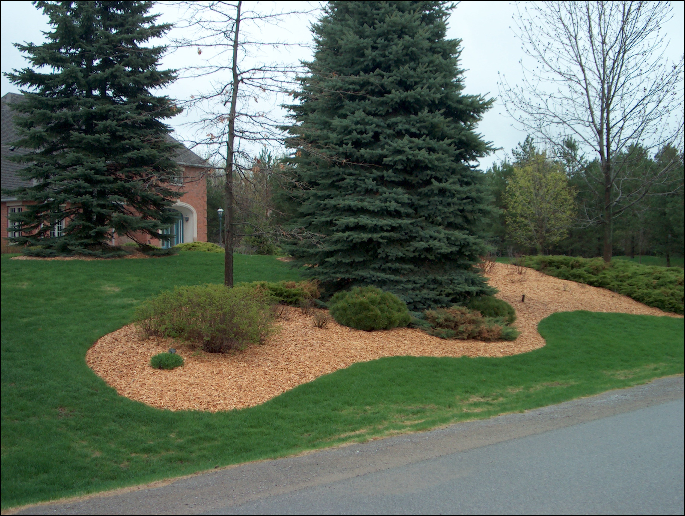 Wood Chips For Landscaping ~ Laying down landscaping fabric and placing wood cedar