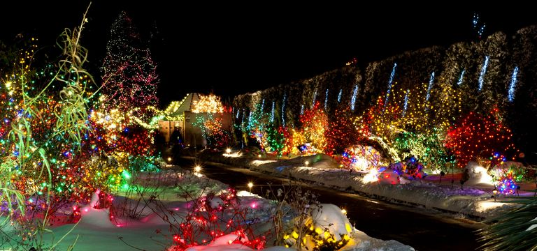 Denver Botanical Gardens Christmas Lights