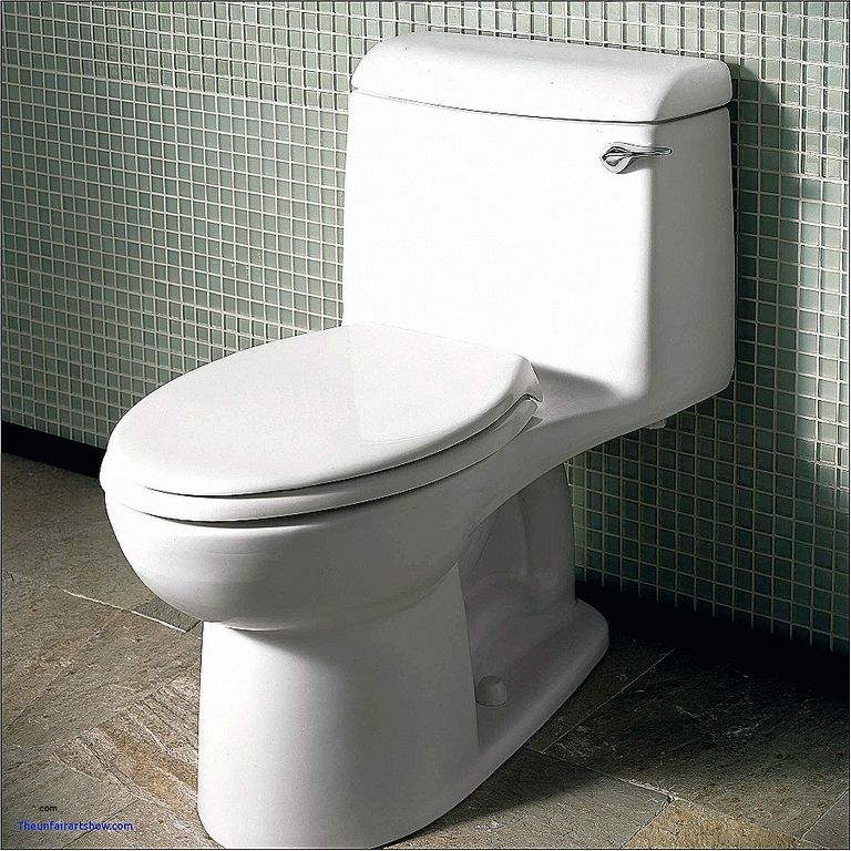 Toilet With Bidet Lowes